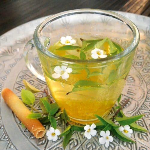 Basilic citron preseme bio