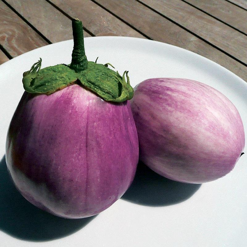 Duo d'aubergines présemé bio