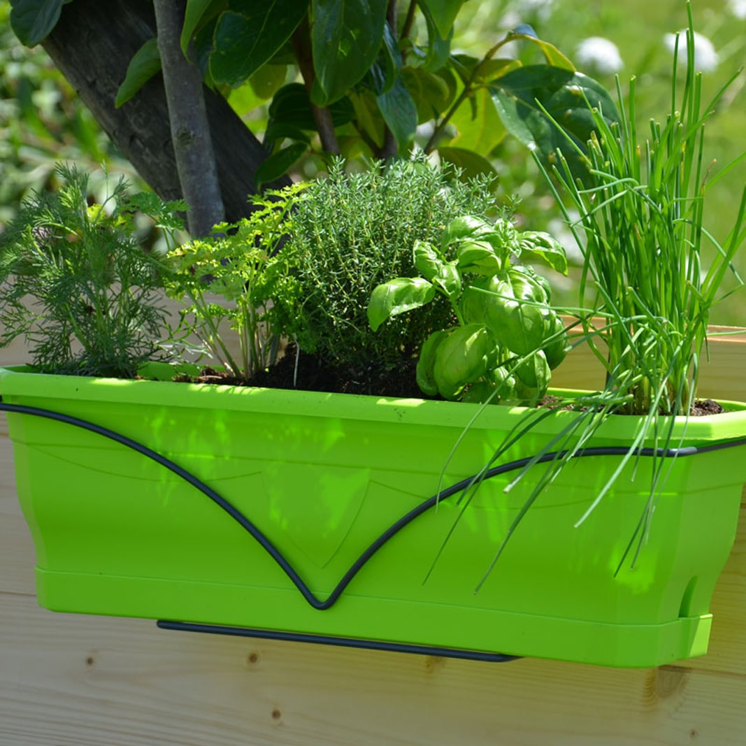 Jardinière Millesia vert tilleul