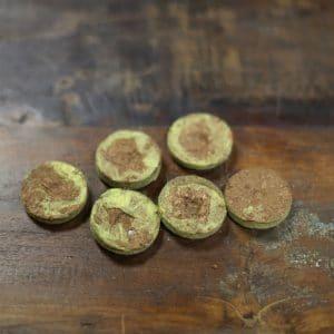 Kit Mini-serre avec ses pastilles de coco