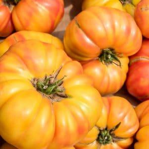 Tomate Ananas (Pineapple) BIO