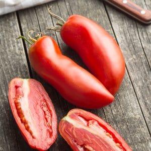 Tomate Andine Cornue (des andes) BIO